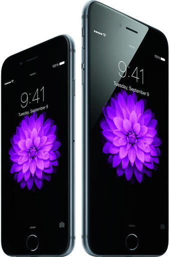 iphone6-34r-spgryiphone6plus-34l-spgry-flwr